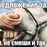 лошадь ржу